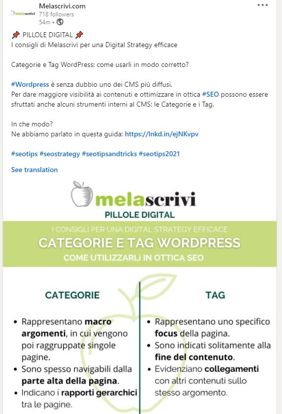 Infografica pubblicata su Linkedin da Melascrivi, il tema trattato è l'utilizzo di categorie e tag wordpress