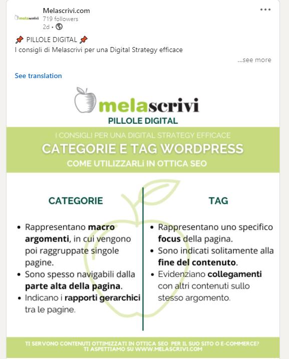 Post infografica sulla pagina linkedin di Melascrivi, dedicato a caegorie e tag wordpress