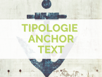 anchor-text-tipologie-guida